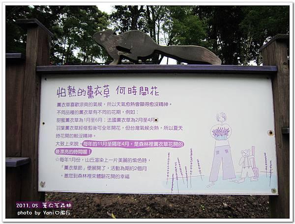 薰衣草森林9.jpg