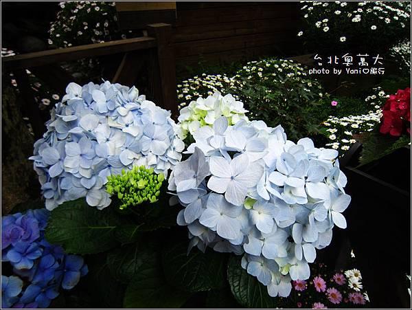 台北奧萬大27.jpg