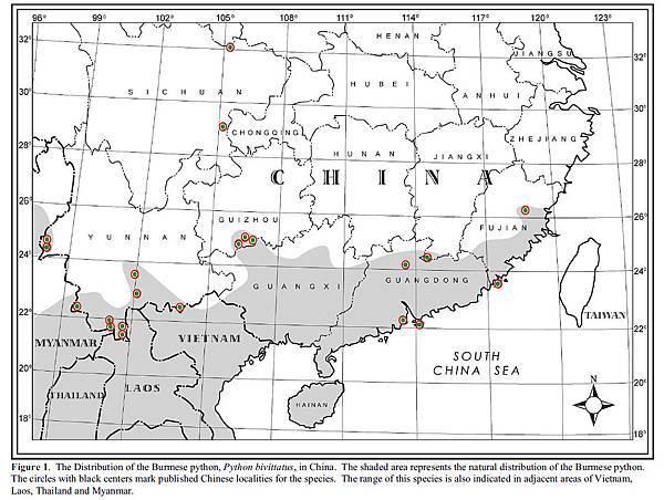 中國分佈 -1.jpg
