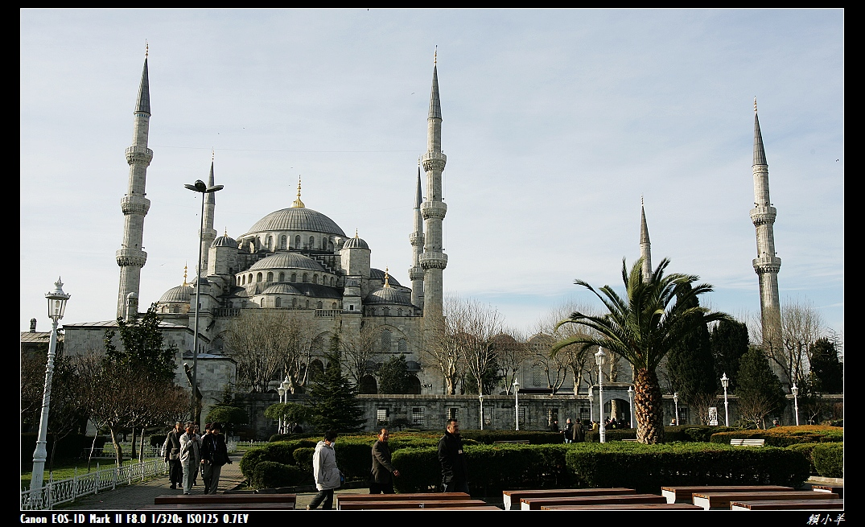 藍色清真寺-2.jpg