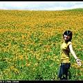 nEO_IMG_P1020087.jpg