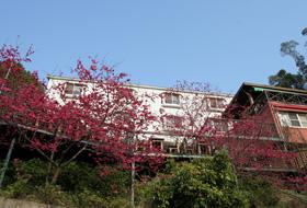白色建築為住宿區