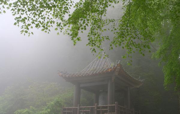 雨霧中的鐘樓