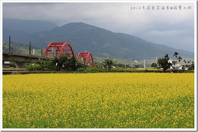 2010年花東花海季-玉里