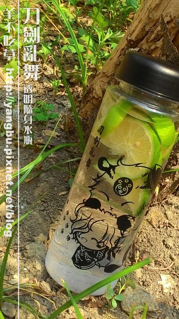 水瓶-刀劍亂舞3