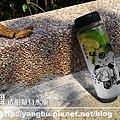 水瓶-刀劍亂舞5