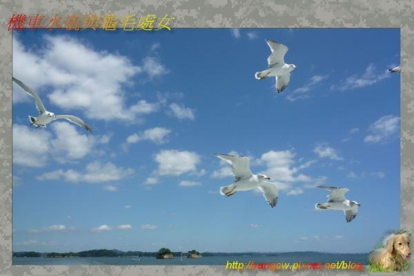 松島3.jpg