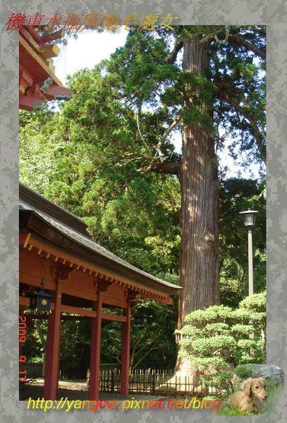 鹽釜神社3.JPG