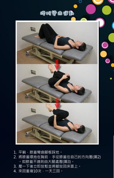 腰椎彎曲運動.jpg