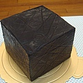 20100522 (5).JPG