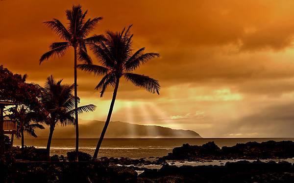 sunsetinthetropics.jpg