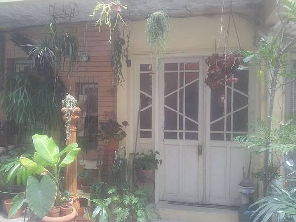 西區 火山花店