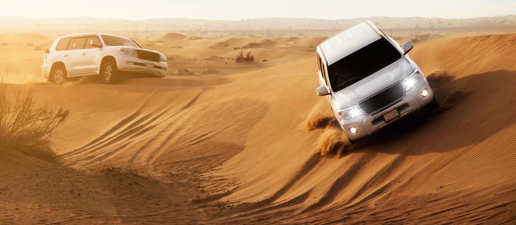 dubai_desert_safari_2.jpg