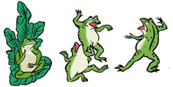青蛙紋.jpg