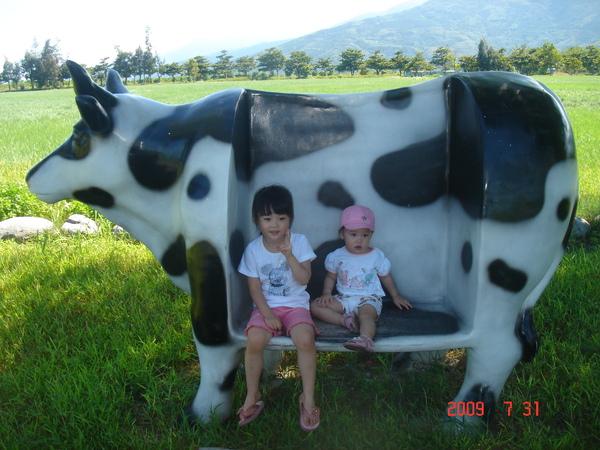 兩姐妹與牛合影