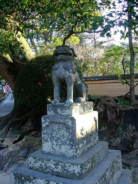 kagoshima (16).JPG