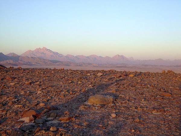 20141230 沙漠日出-阿拉伯游牧人 (46) (Copy).JPG