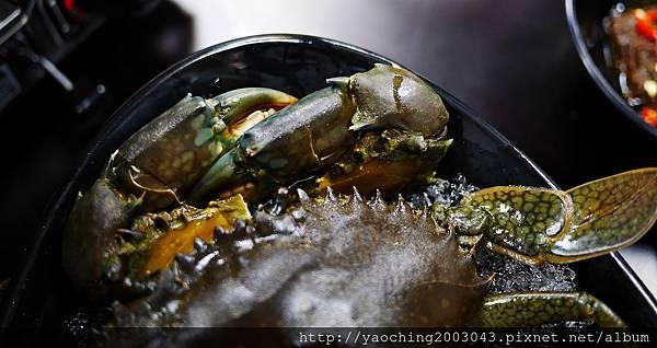 1462183978 1617690158 n - 【熱血採訪】台中北屯 蟹驚艷海鮮餐廳,各種活跳跳生猛海鮮都能為您料理,螃蟹海鮮料理的專門家,現在打卡還有送干貝,一人打卡送一顆以此類推