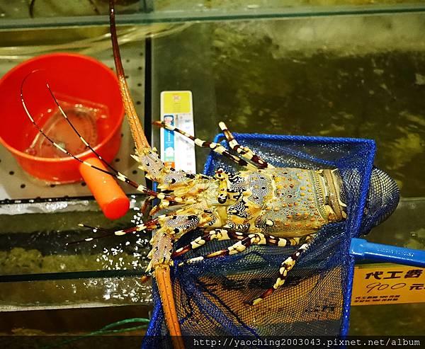 1462184084 1604824455 n - 【熱血採訪】台中北屯 蟹驚艷海鮮餐廳,各種活跳跳生猛海鮮都能為您料理,螃蟹海鮮料理的專門家,現在打卡還有送干貝,一人打卡送一顆以此類推