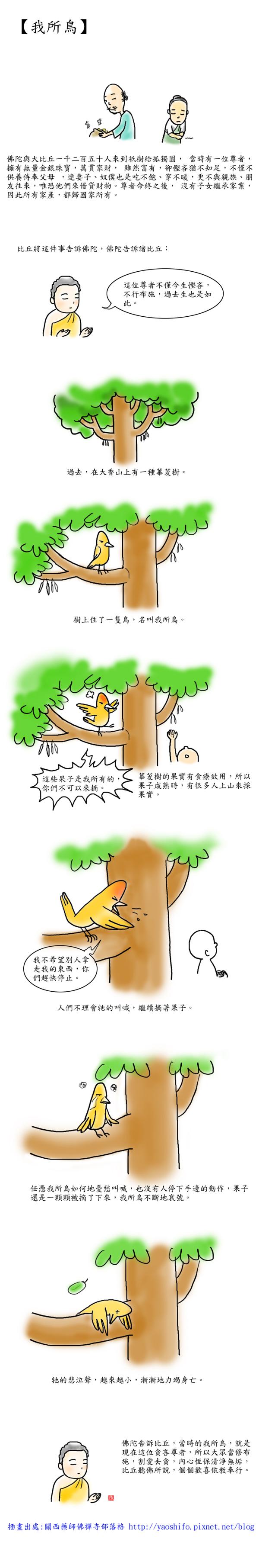 我所鳥.jpg