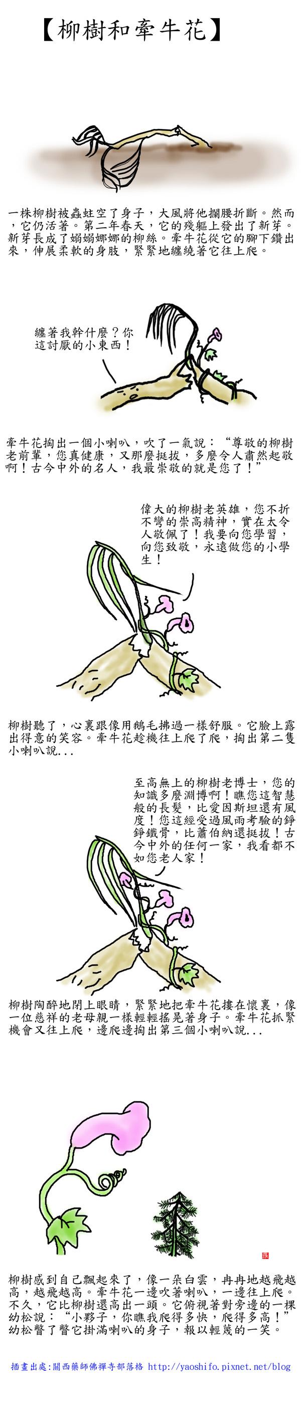 柳樹和牽牛花