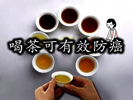 2茶知識 -1.