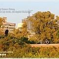 20130212_台南_0534