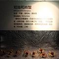20130213_台南_0168