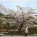 20130401_京阪神_1018