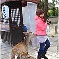 20130401_京阪神_1025