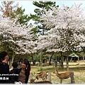 20130401_京阪神_1031