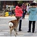 20130401_京阪神_1033