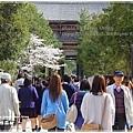 20130401_京阪神_1046
