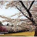 20130401_京阪神_1056