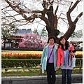 20130401_京阪神_1063