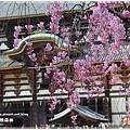20130401_京阪神_1098