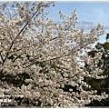 20130401_京阪神_1100
