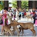 20130401_京阪神_1103
