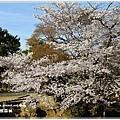20130401_京阪神_1105