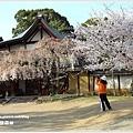 20130401_京阪神_1108
