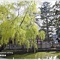 20130401_京阪神_1107