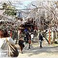 20130401_京阪神_1116