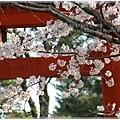 20130401_京阪神_1120