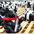 熊貓12.JPG