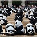 熊貓18.JPG