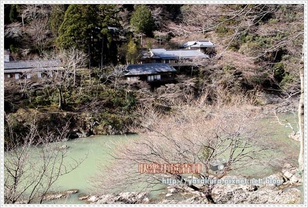 京都自由行062