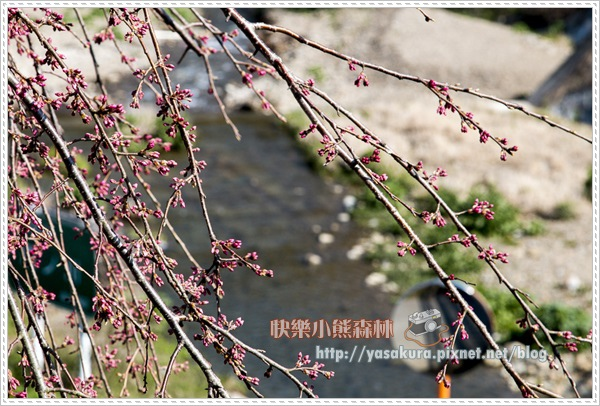 京都自由行074