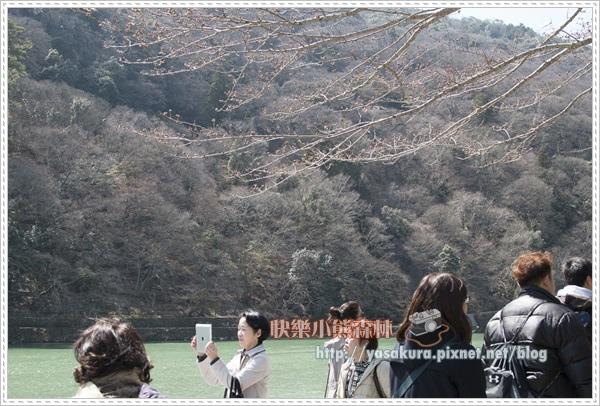 京都自由行136