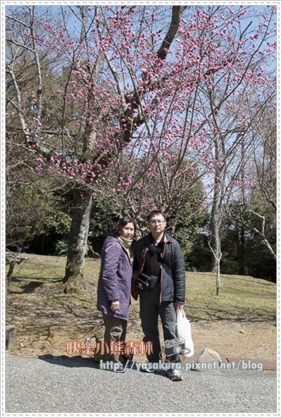 京都自由行149