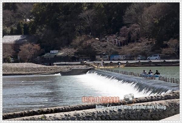 京都自由行222